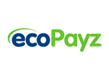 EcoPayz Online Casino – Reviewing the Payment Solution for NZ Players